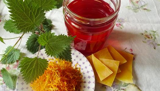 Kruidenatelier Filiamosa – In de tuin van Filiamosa worden kruiden, groenten en eetbare bloemen vers geplukt en verwerkt tijdens workshops en cursussen. Zowel voor medicinale doeleinden, keukengebruik en in huidverzorgende producten. Ook leer je er hoe je zelf een eetbare tuin opzet; van zaadje tot op je bord.